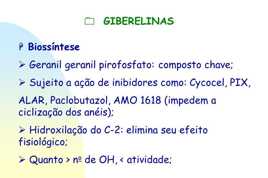  GIBERELINAS  Biossíntese.  Geranil geranil pirofosfato: composto chave;  Sujeito a ação de inibidores como: Cycocel, PIX,