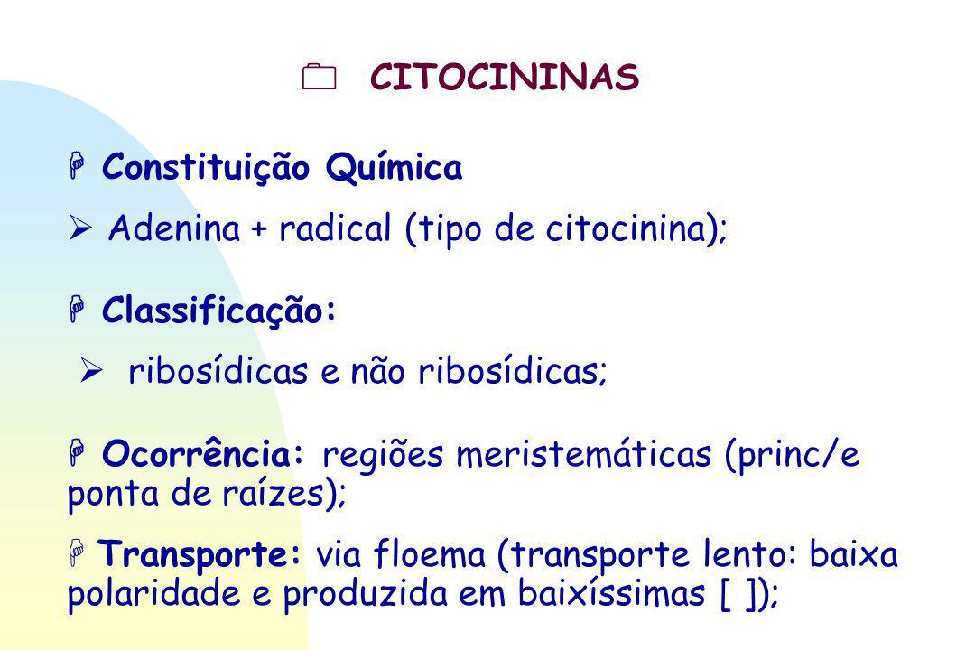  CITOCININAS  Constituição Química.  Adenina + radical (tipo de citocinina);  Classificação: