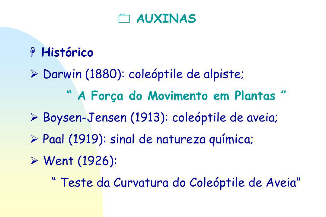  Darwin (1880): coleóptile de alpiste;