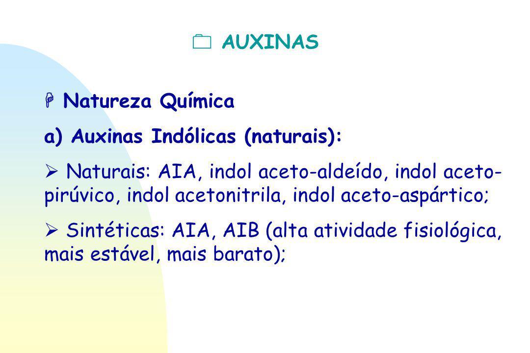  AUXINAS  Natureza Química. a) Auxinas Indólicas (naturais):