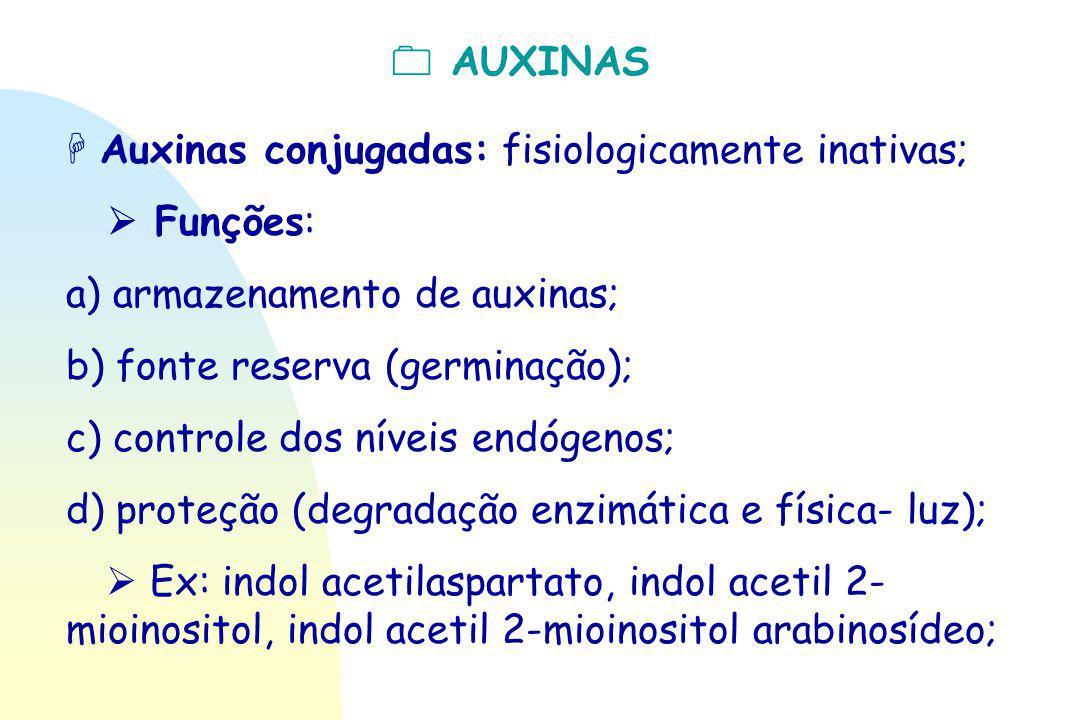  AUXINAS  Auxinas conjugadas: fisiologicamente inativas;  Funções: a) armazenamento de auxinas;