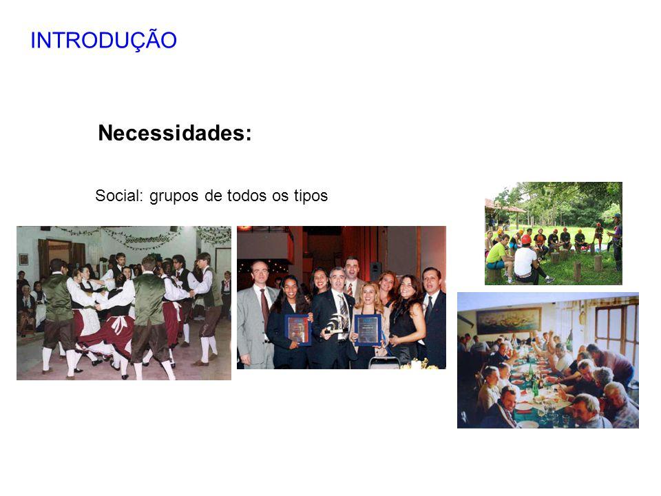 INTRODUÇÃO Necessidades: Social: grupos de todos os tipos 7