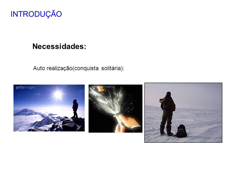 INTRODUÇÃO Necessidades: Auto realização(conquista solitária): 9