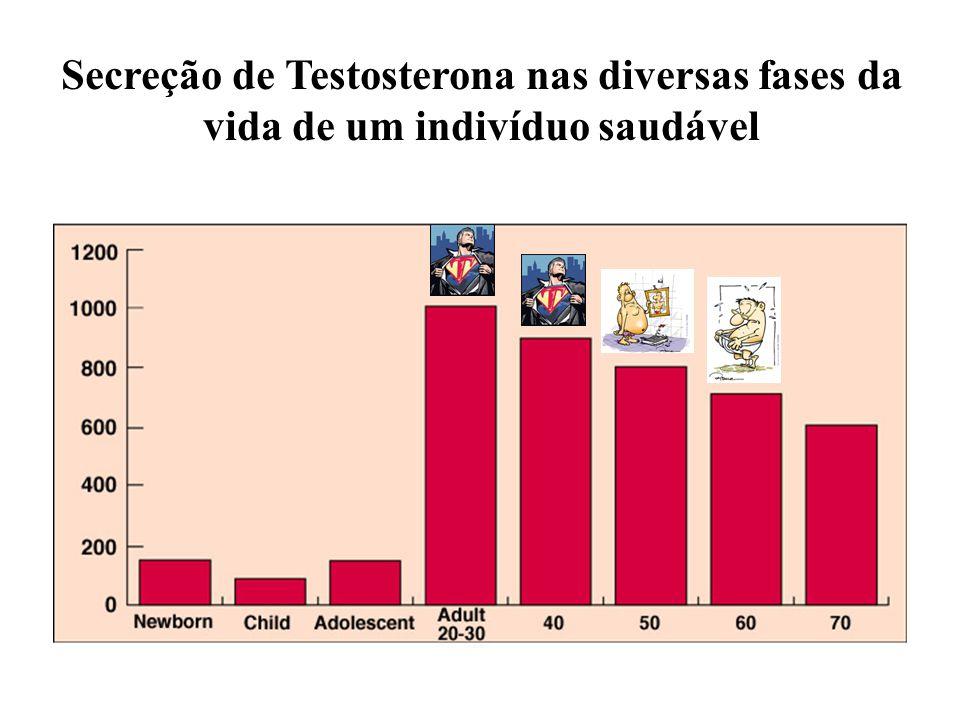 Secreção de Testosterona nas diversas fases da vida de um indivíduo saudável