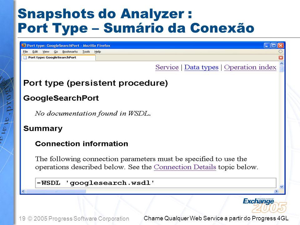 Snapshots do Analyzer : Port Type – Sumário da Conexão