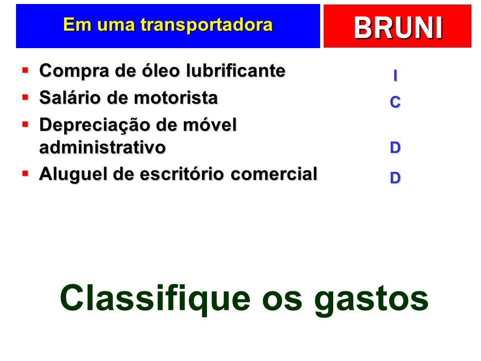 Classifique os gastos Em uma transportadora