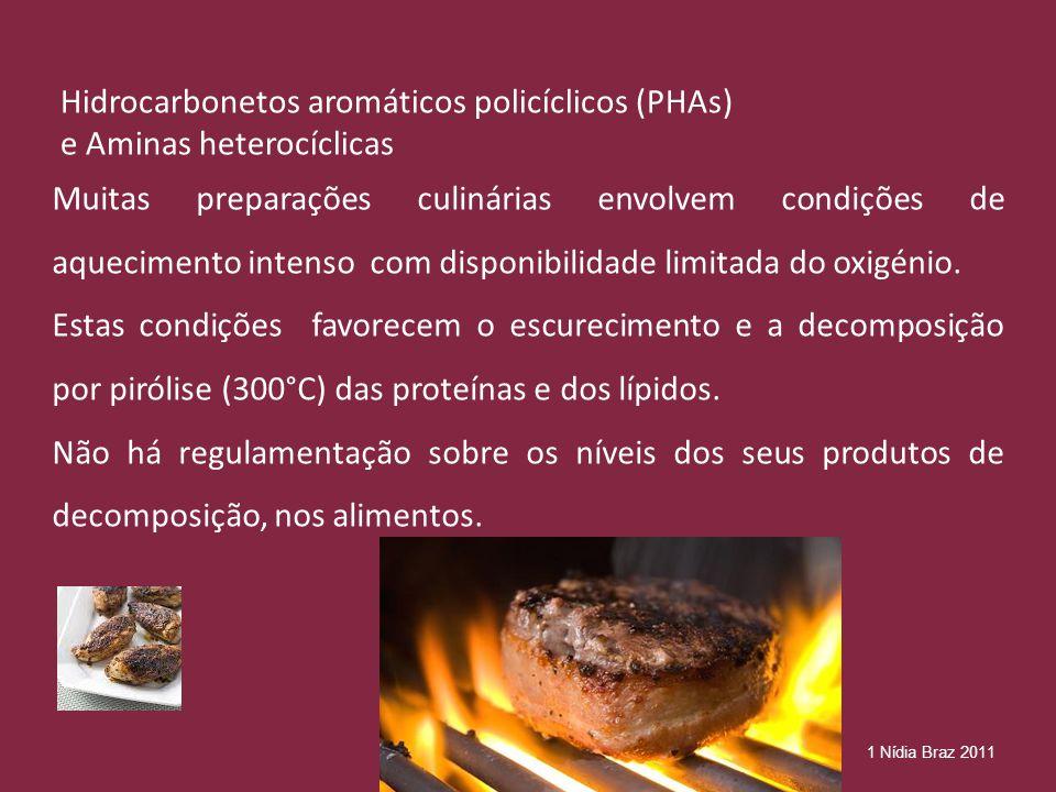 Hidrocarbonetos aromáticos policíclicos (PHAs) e Aminas heterocíclicas
