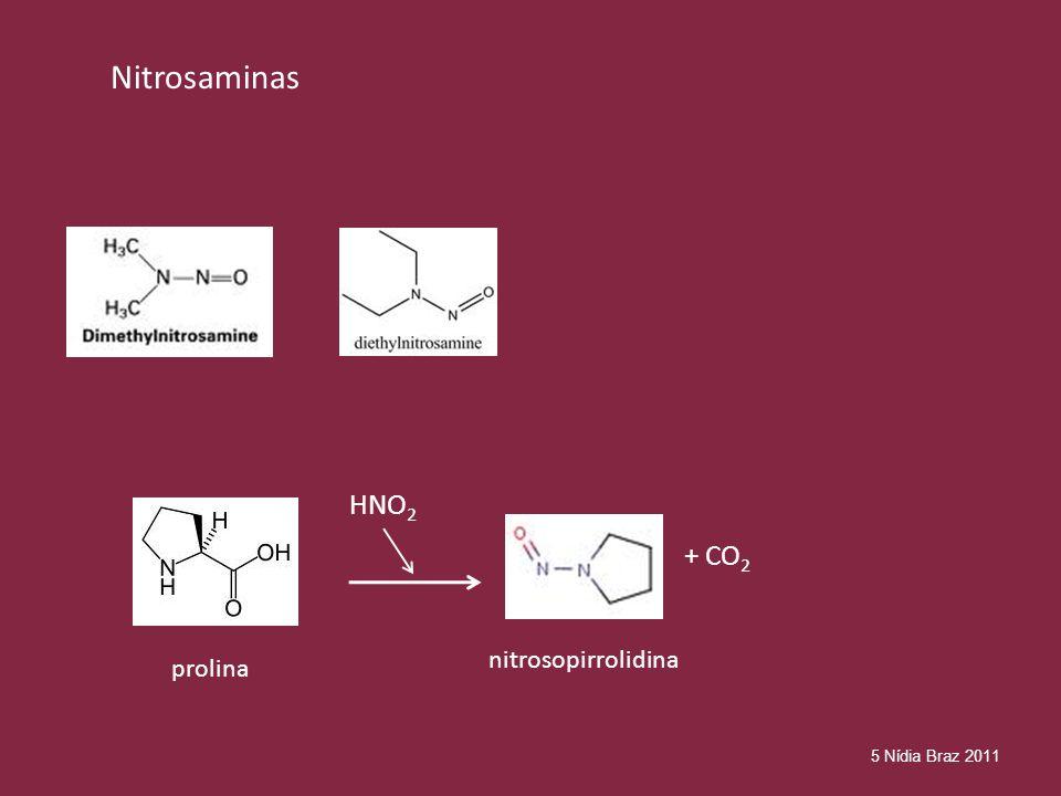 Nitrosaminas HNO2 + CO2 nitrosopirrolidina prolina 5 Nídia Braz 2011