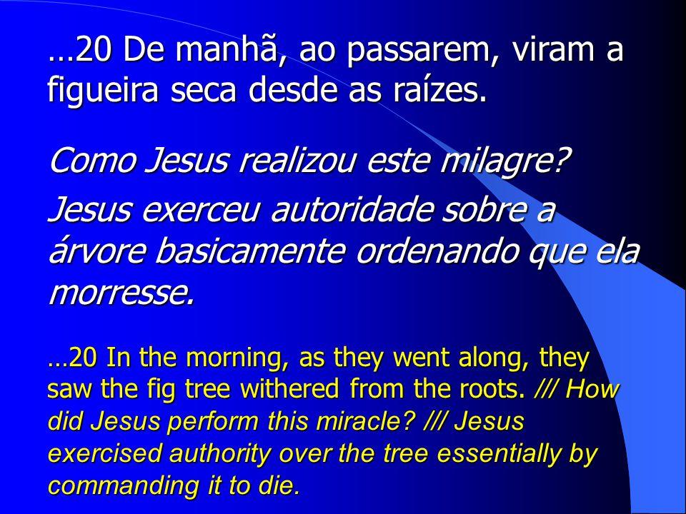 …20 De manhã, ao passarem, viram a figueira seca desde as raízes.