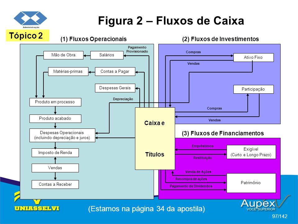 Figura 2 – Fluxos de Caixa