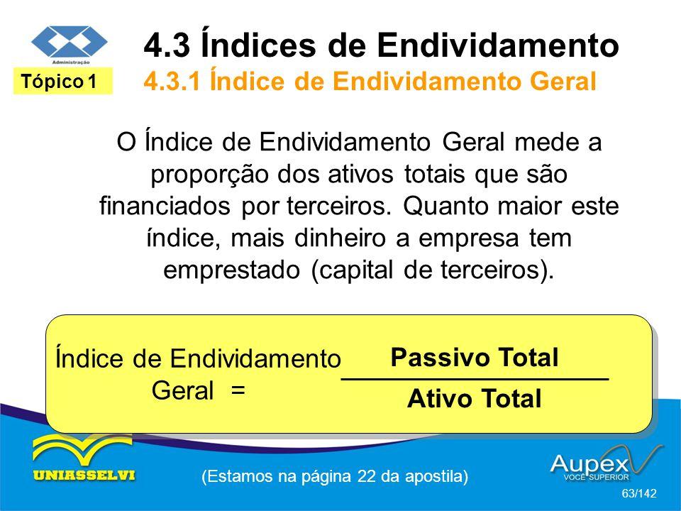 4.3 Índices de Endividamento 4.3.1 Índice de Endividamento Geral