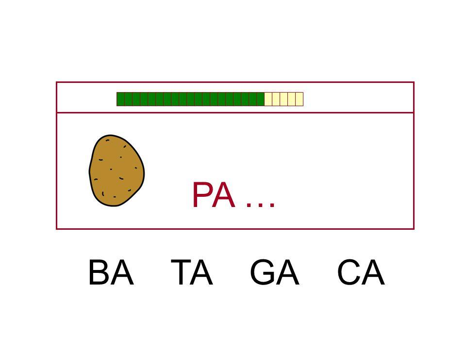 PA … BA TA GA CA