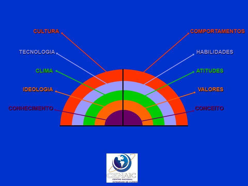 CULTURA COMPORTAMENTOS. TECNOLOGIA. HABILIDADES. CLIMA. ATITUDES. IDEOLOGIA. VALORES. CONHECIMENTO.