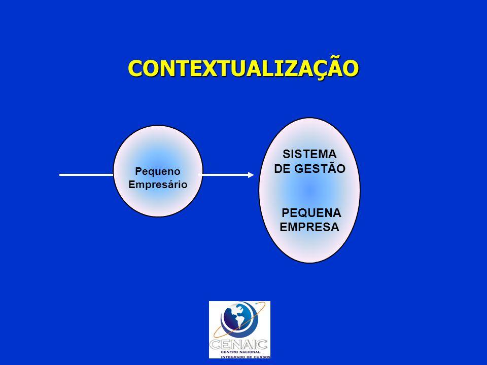 CONTEXTUALIZAÇÃO SISTEMA DE GESTÃO PEQUENA EMPRESA Pequeno Empresário
