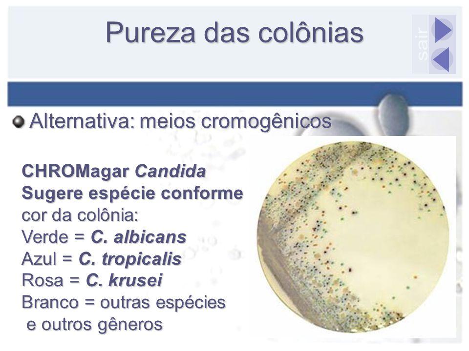 Pureza das colônias sair Alternativa: meios cromogênicos