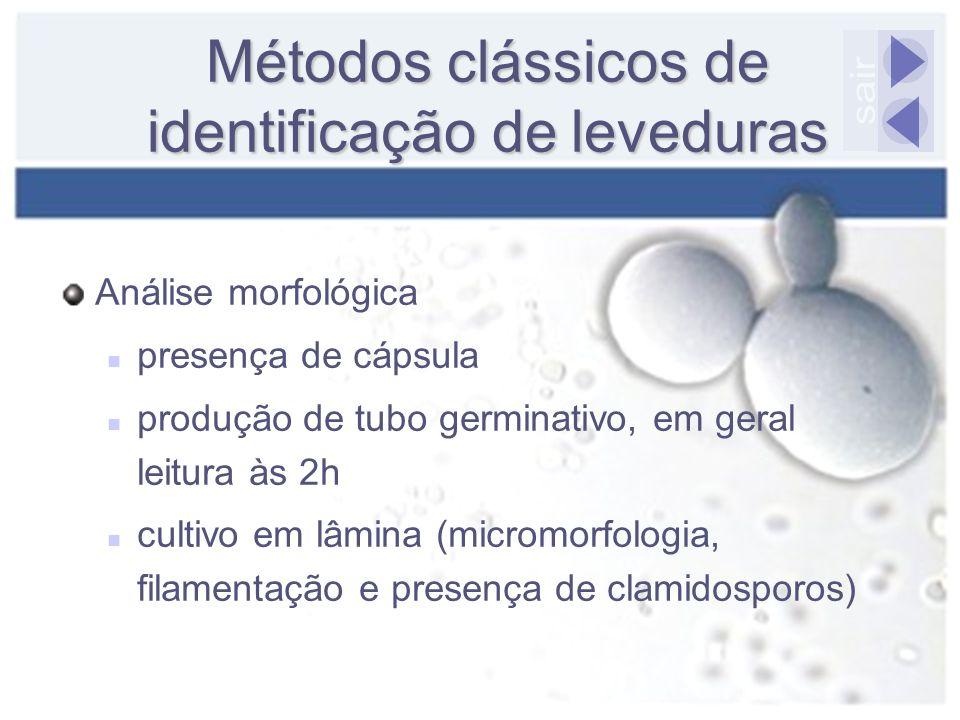 Métodos clássicos de identificação de leveduras