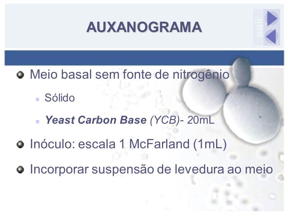 AUXANOGRAMA sair Meio basal sem fonte de nitrogênio