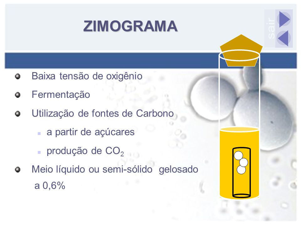 ZIMOGRAMA sair Baixa tensão de oxigênio Fermentação