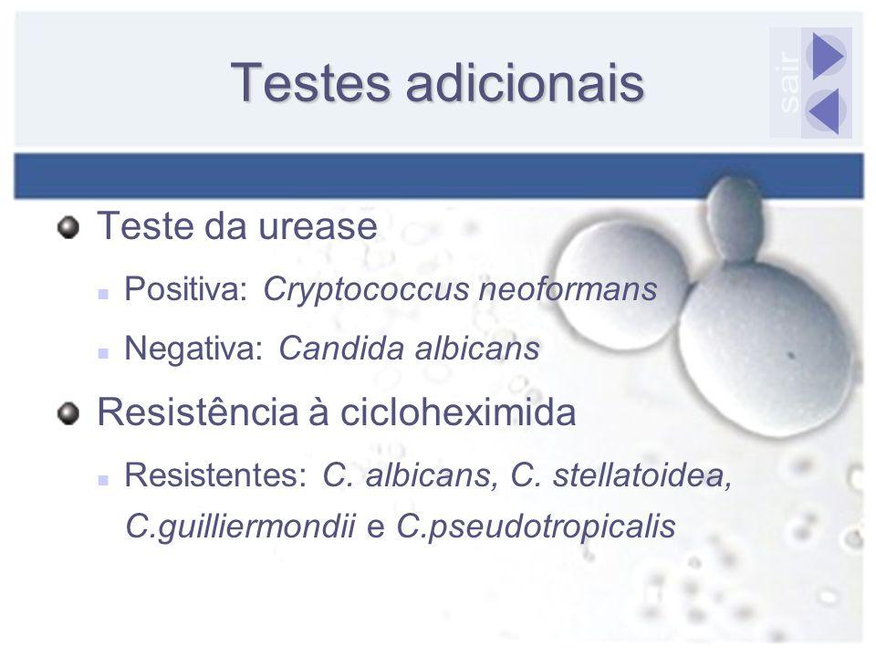 Testes adicionais sair Teste da urease Resistência à cicloheximida