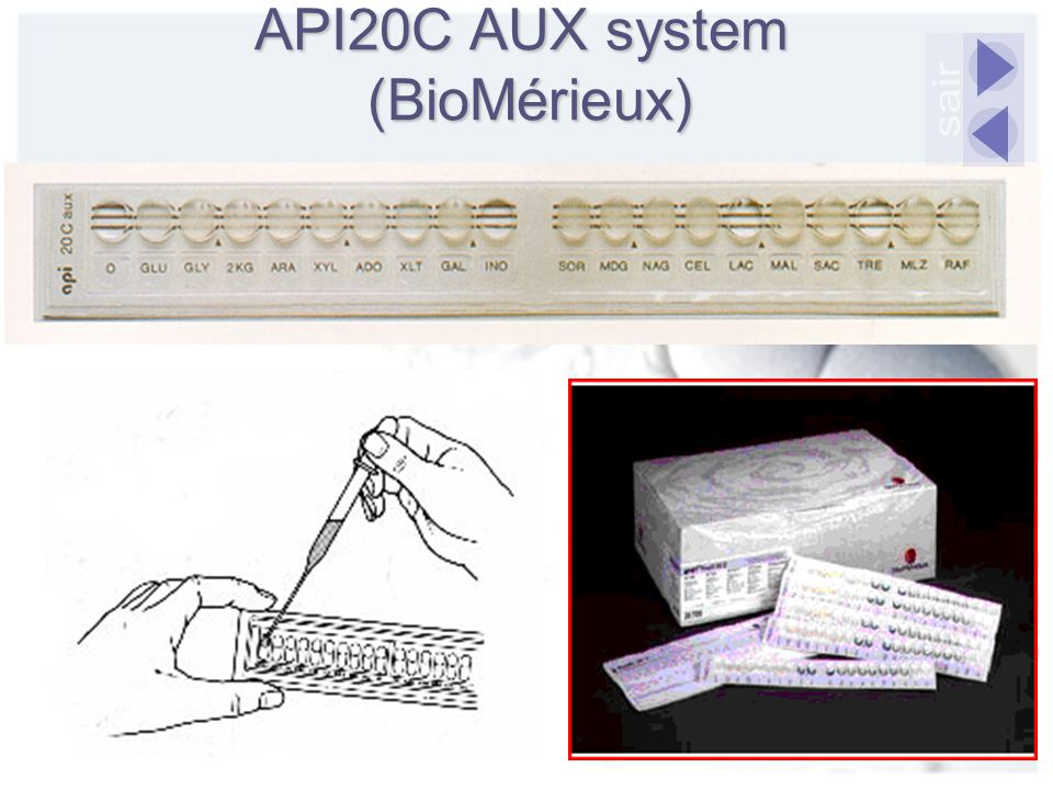 API20C AUX system (BioMérieux)