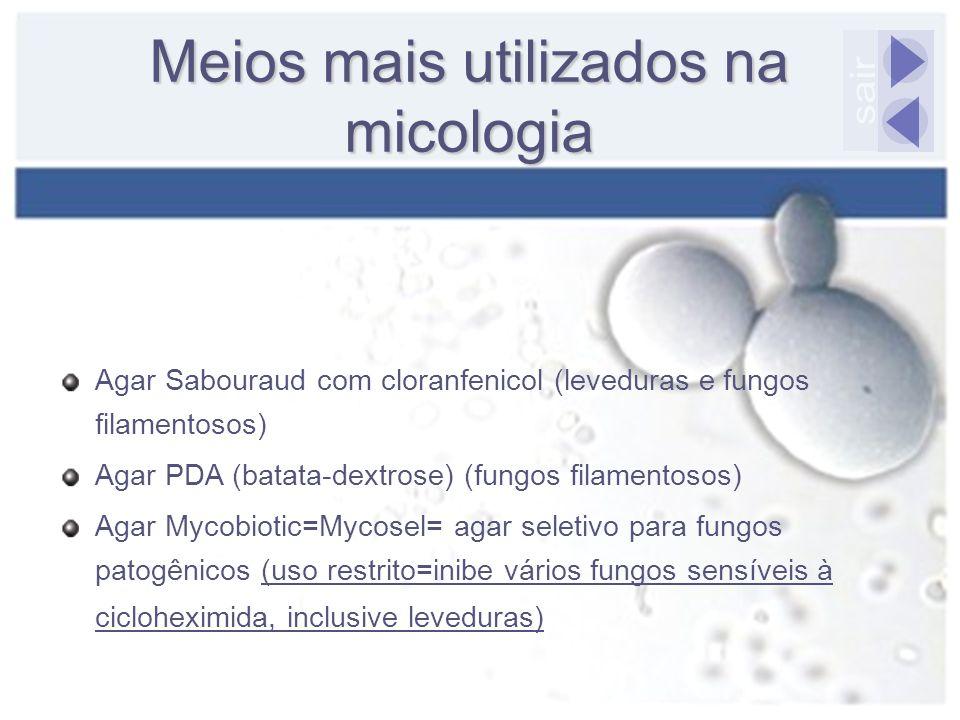 Meios mais utilizados na micologia