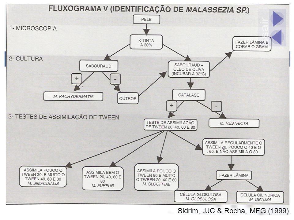 sair Sidrim, JJC & Rocha, MFG (1999).