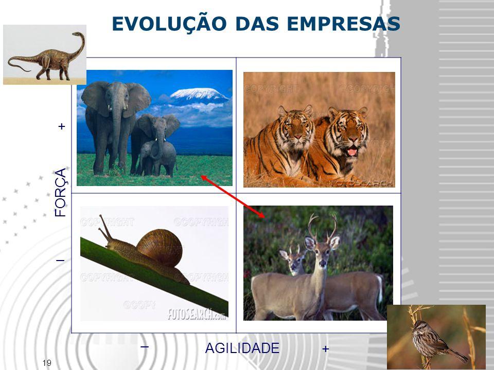 EVOLUÇÃO DAS EMPRESAS FORÇA _ + AGILIDADE + _