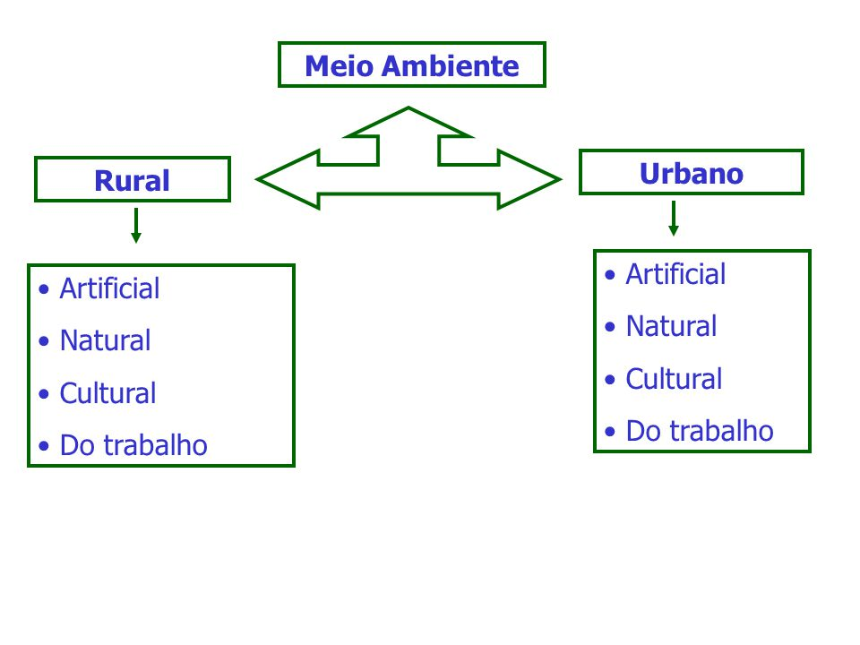Meio Ambiente Urbano. Rural. Artificial. Natural. Cultural. Do trabalho. Artificial. Natural.
