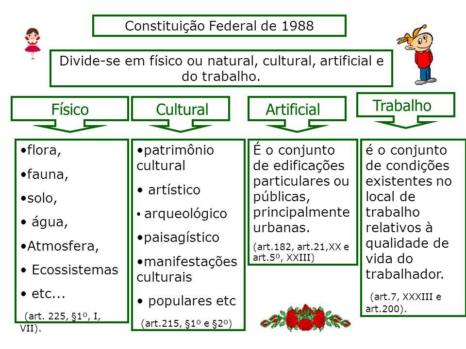 Trabalho Físico Cultural Artificial Constituição Federal de 1988