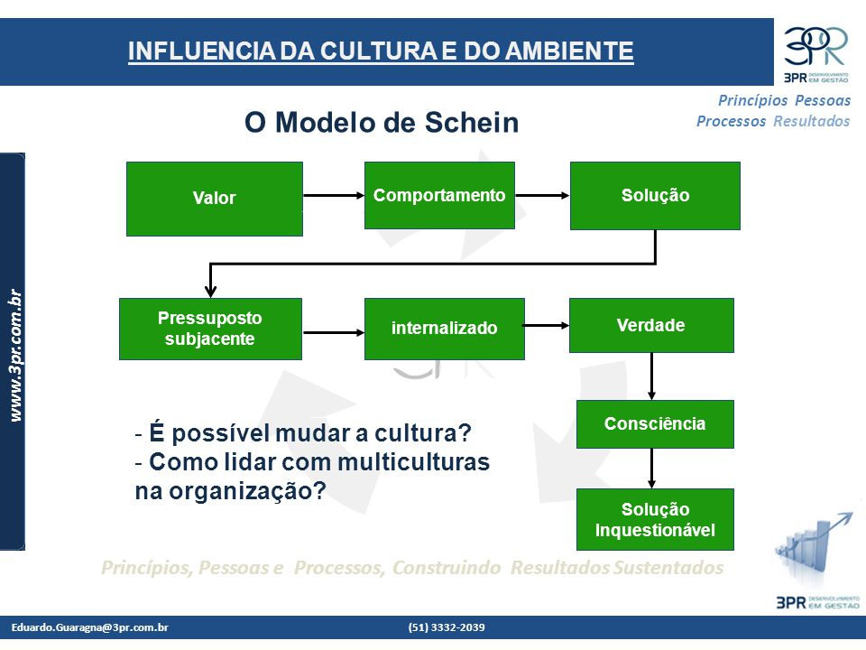 O Modelo de Schein INFLUENCIA DA CULTURA E DO AMBIENTE