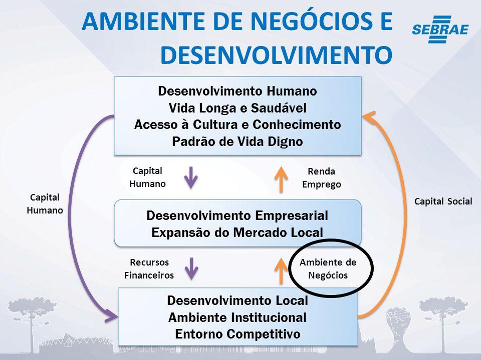 AMBIENTE DE NEGÓCIOS E DESENVOLVIMENTO