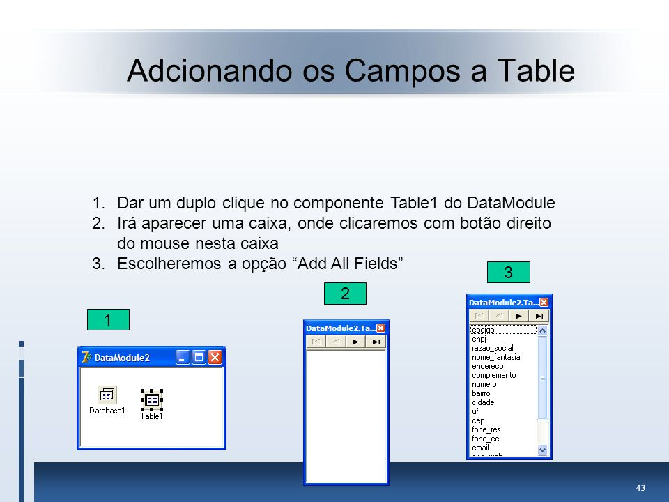 Adcionando os Campos a Table