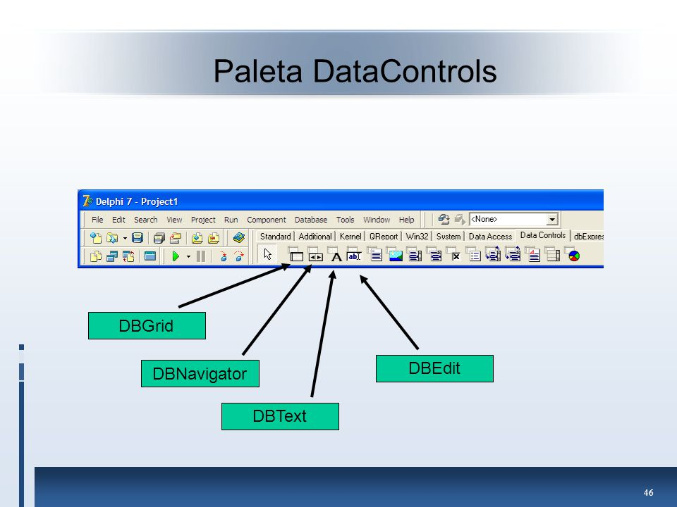Paleta DataControls DBGrid DBEdit DBNavigator DBText