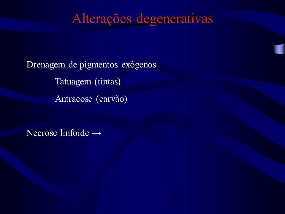 Alterações degenerativas