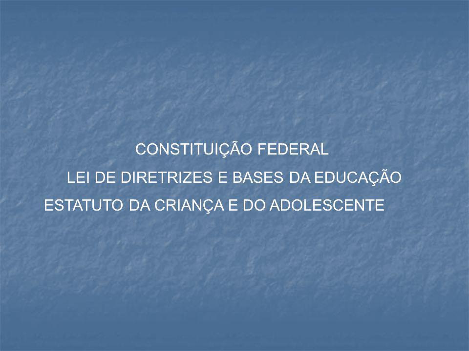 LEI DE DIRETRIZES E BASES DA EDUCAÇÃO