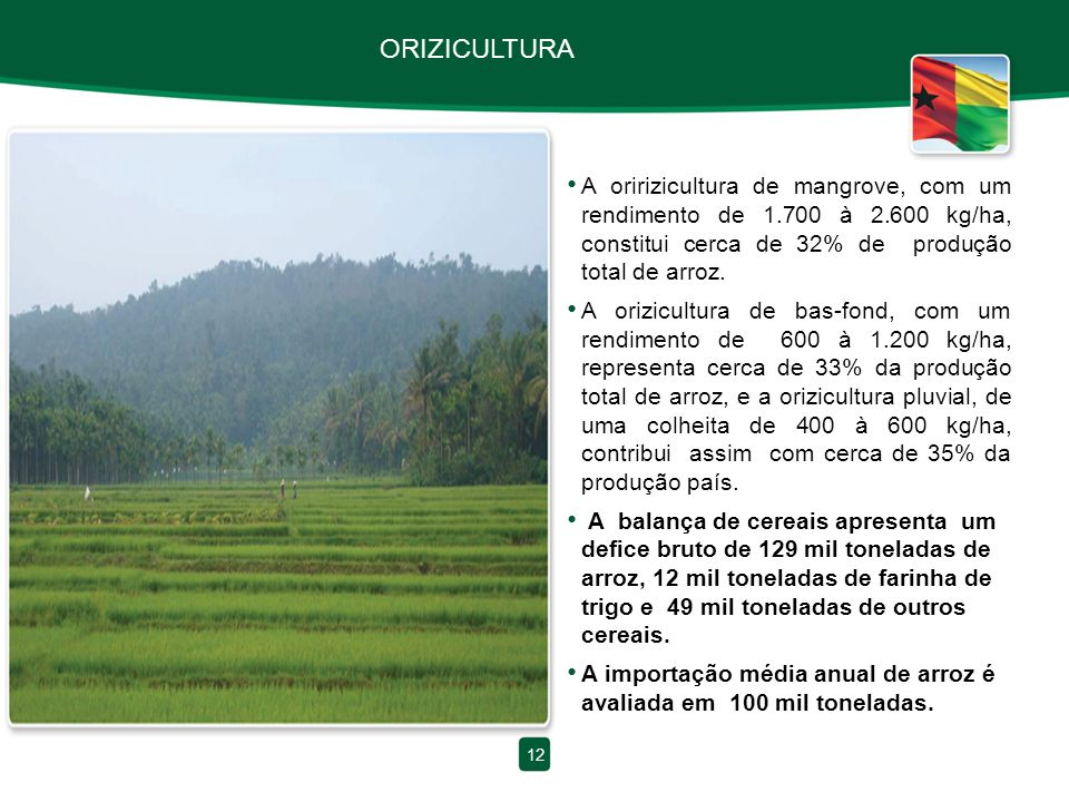 ORIZICULTURA A oririzicultura de mangrove, com um rendimento de 1.700 à 2.600 kg/ha, constitui cerca de 32% de produção total de arroz.