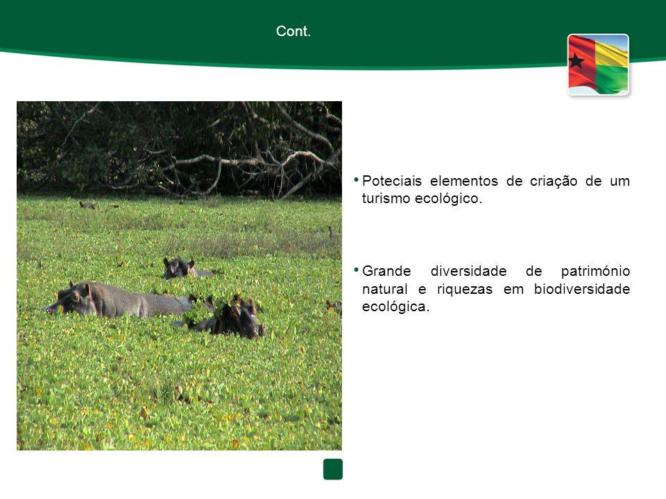 Cont. Poteciais elementos de criação de um turismo ecológico.