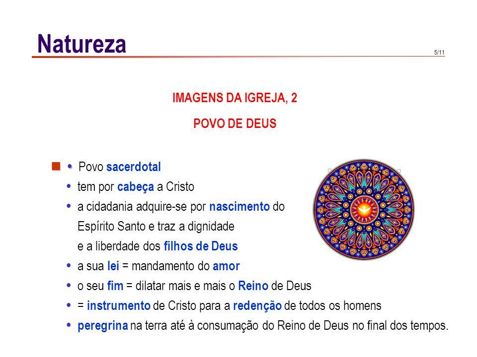 CORPO MÍSTICO DE CRISTO