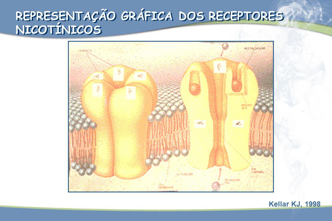 REPRESENTAÇÃO GRÁFICA DOS RECEPTORES NICOTÍNICOS