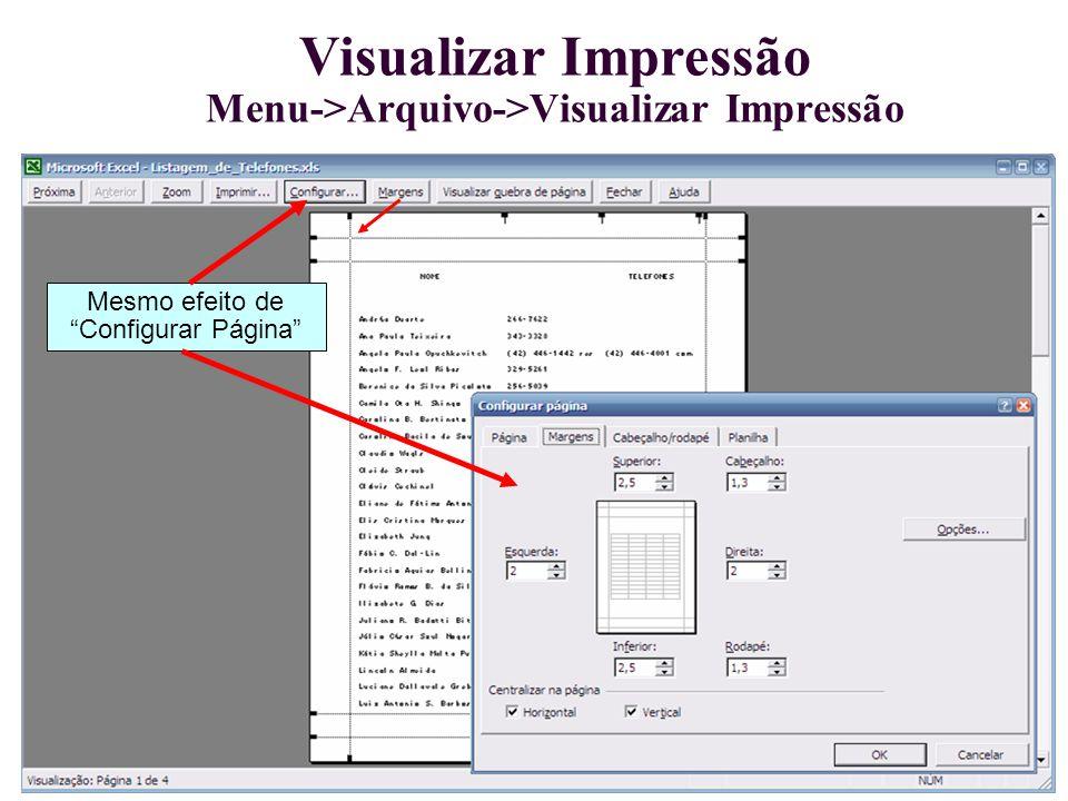 Visualizar Impressão Menu->Arquivo->Visualizar Impressão