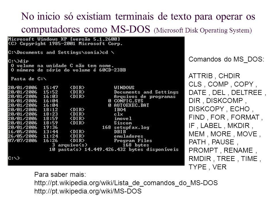 No inicio só existiam terminais de texto para operar os computadores como MS-DOS (Microsoft Disk Operating System)