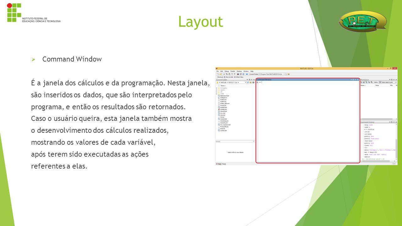 Layout Command Window. É a janela dos cálculos e da programação. Nesta janela, são inseridos os dados, que são interpretados pelo.