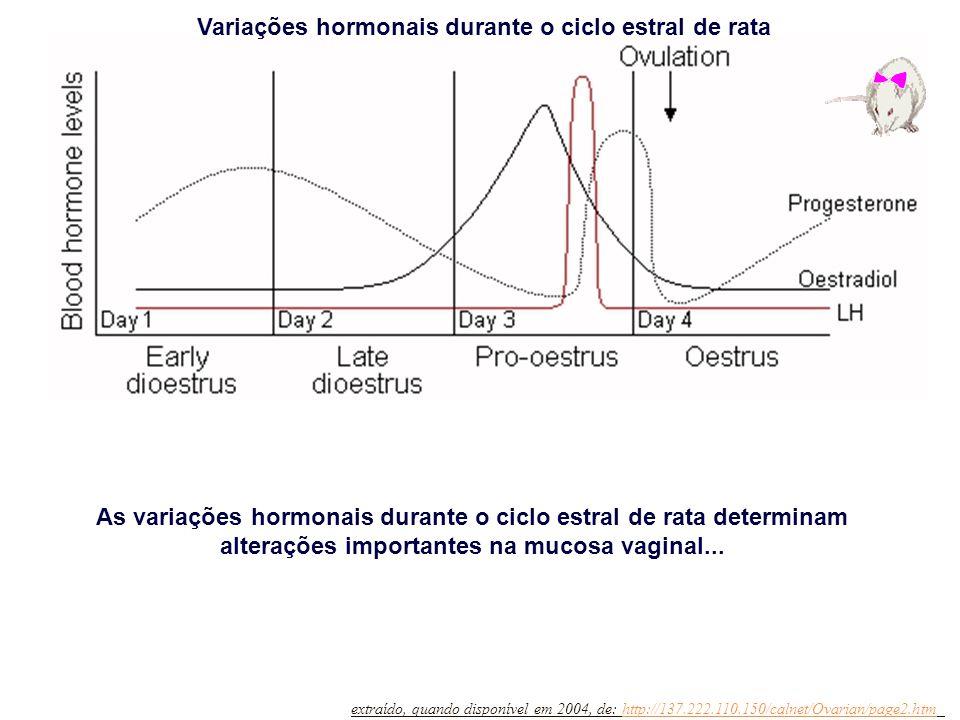 Variações hormonais durante o ciclo estral de rata