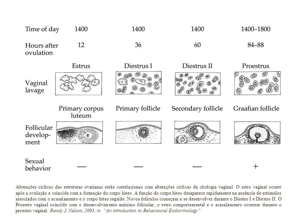 Alterações cíclicas das estruturas ovarianas estão correlacionas com alterações cíclicas da citologia vaginal.