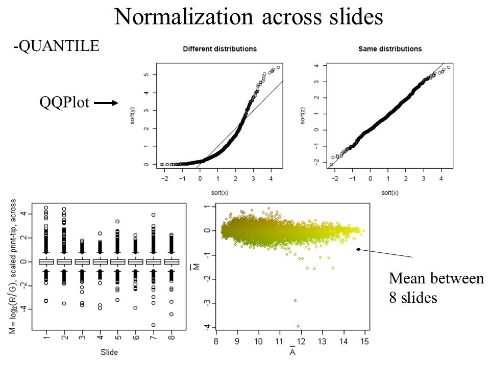 Normalization across slides