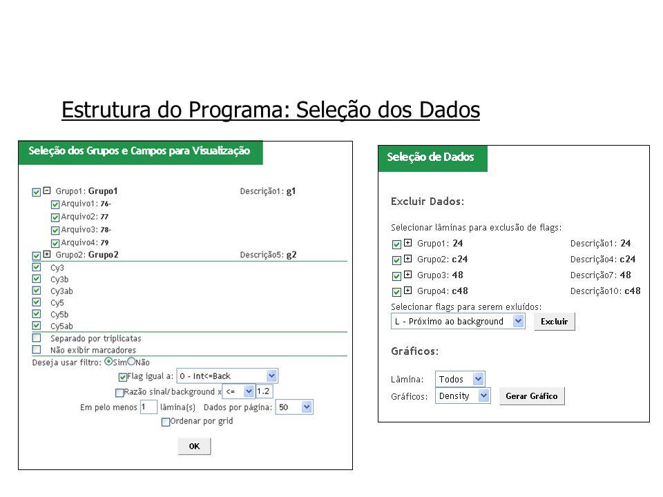 Estrutura do Programa: Seleção dos Dados