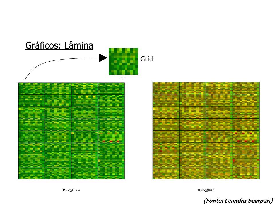 Gráficos: Lâmina Grid (Fonte: Leandra Scarpari)