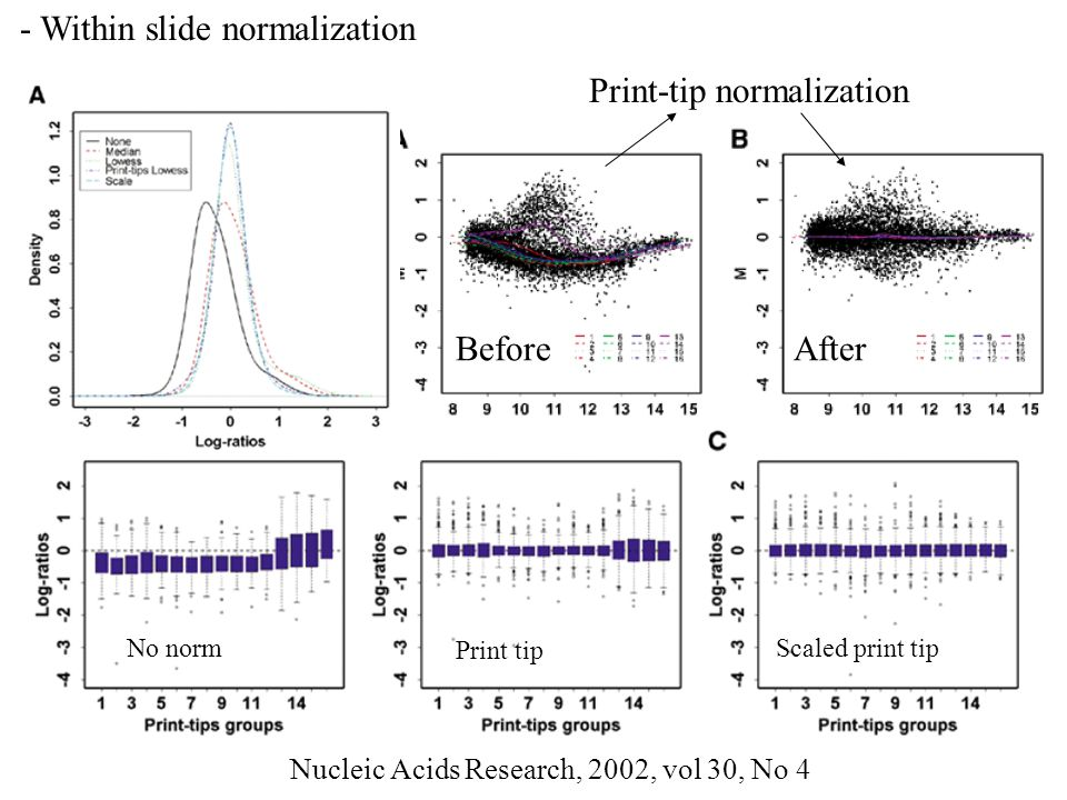 - Within slide normalization
