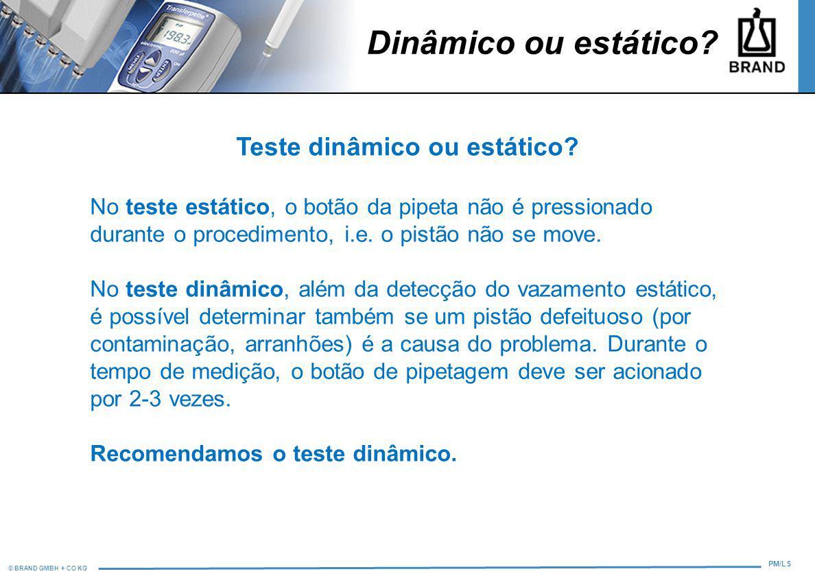Teste dinâmico ou estático