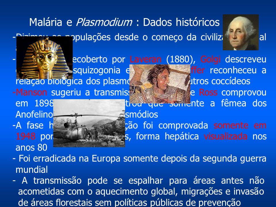 Malária e Plasmodium : Dados históricos
